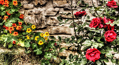 Photograph - Roses And Nasturtiums by Weston Westmoreland
