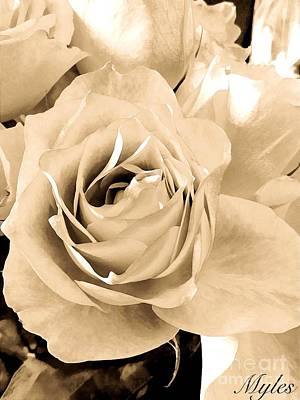 Photograph - Roses Are Vintage by Saundra Myles