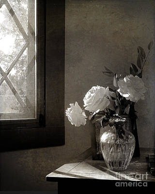 Photograph - Roses At The Attic Window by Terry Rowe