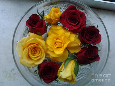 Photograph - Yellow Roses by Chitra Helkar