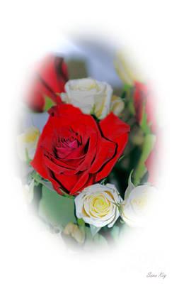 Photograph - Roses. Delicate White Card by Oksana Semenchenko