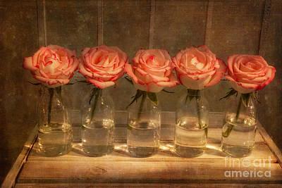 Roses In A Row Art Print by Ann Garrett