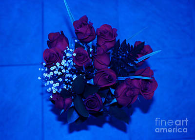 Photograph - Roses In Blue by Oksana Semenchenko