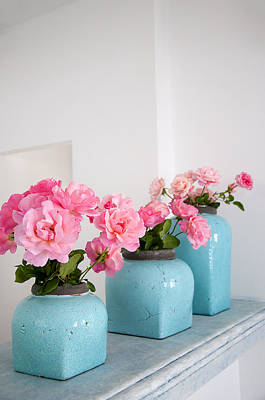 Photograph - Roses In Turquoise Pots by Brenda Kean
