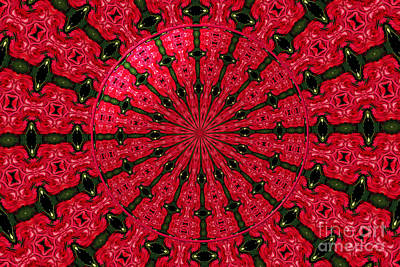Mural Photograph - Roses Kaleidoscope Under Glass 24 by Rose Santuci-Sofranko