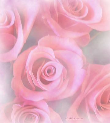 Vermeer Rights Managed Images - Roses Royalty-Free Image by Mikki Cucuzzo