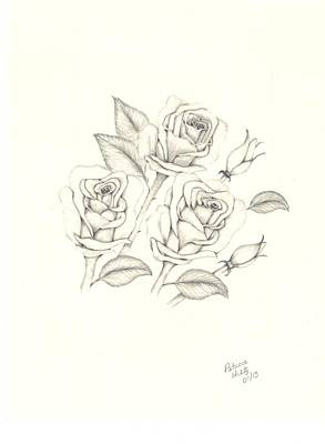 Rosebud Drawing - Roses by Patricia Hiltz