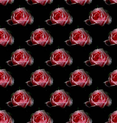 Photograph - Roses Pillow By Barbara Moignard by Artists for Altered Cats Cyprus