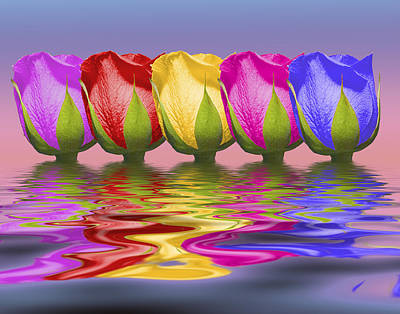 Rainbow Rose Photograph - Roses Rising by Tom Mc Nemar