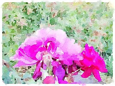 Digital Art - Roses by Shannon Grissom