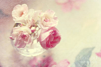 Roses Art Print by Sylvia Cook