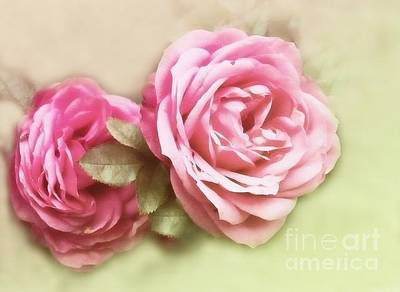Photograph - Roses by Sylvia  Niklasson