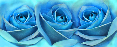 Photograph - Roses Three Blue Abstract by Jennie Marie Schell
