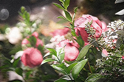 Photograph - Roses To Make You Happy by Ericamaxine Price