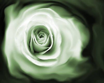 Photograph - Rose's Whispers Green by Jennie Marie Schell