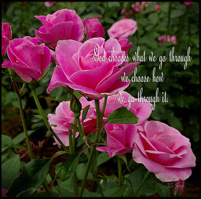Photograph - Roses With Message / Floral by James C Thomas