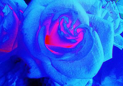 The Rolling Stones - Rosescape in Blue by Regina Kyle