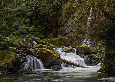 Photograph - Rosewall Falls by Randy Hall