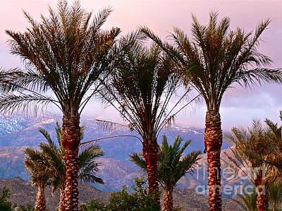 Photograph - Rosy Blue Desert Sunrise by Deborah Smolinske