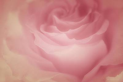 Abstract Art Painting - Rosy Loveliness by The Art Of Marilyn Ridoutt-Greene