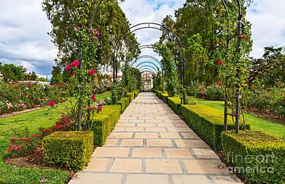 Stone Walkway Photograph - Rosy Path by Jamie Pham