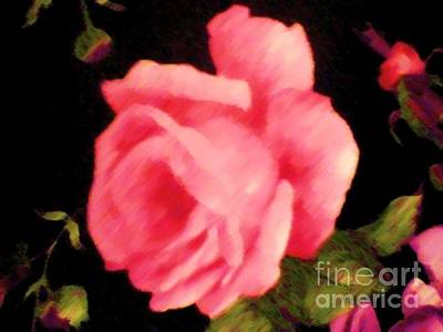 Painting - Rosy Pink Painted  by Catherine Lott