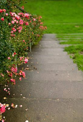 Rosy Stairway Print by Kunal Mehra