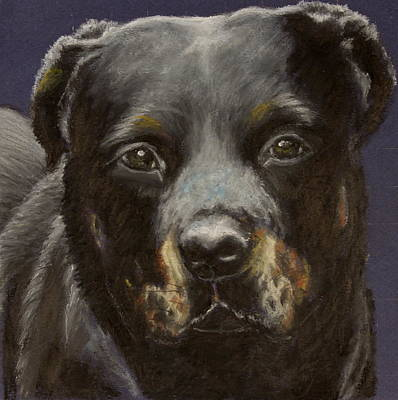 Painting - Rottie by Jeanne Fischer