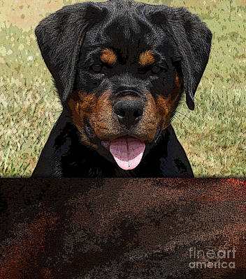 Mixed Media - Rottweiler by Marvin Blaine