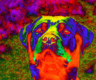 Pedigreed Digital Art - Rottweiler Portrait Pop Art by Eti Reid