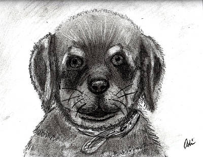 Rottweiler Pup Art Print by Minding My  Visions by Adri and Ray