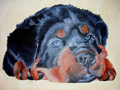 Print featuring the painting Rottweiler Puppy Portrait by Tracey Harrington-Simpson