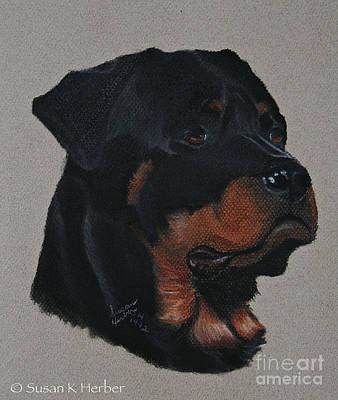 Pastel - Rottweiler by Susan Herber