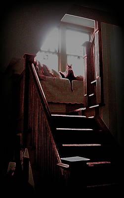 Photograph - Rouge Et Noir by Jodie Marie Anne Richardson Traugott          aka jm-ART
