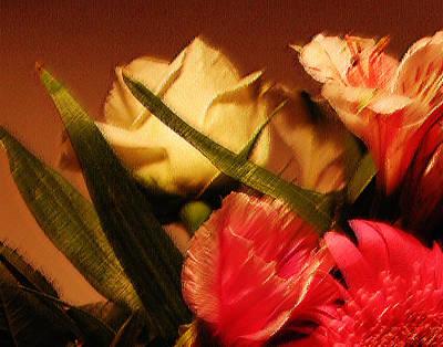 Rough Pastel Flowers - Award-winning Photograph Art Print by Gerlinde Keating - Galleria GK Keating Associates Inc