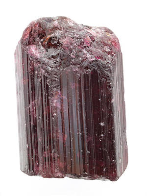 Tourmaline Photograph - Rough Pinkish-red Rubellite by Dorling Kindersley/uig