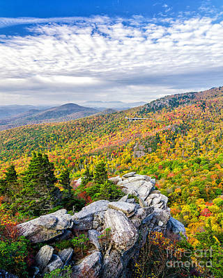 Photograph - Rough Ridge Autumn by Anthony Heflin