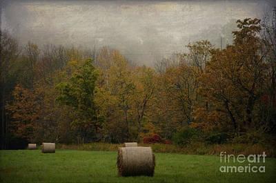 Photograph - Round Bales by Debra Fedchin