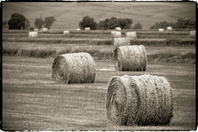 Photograph - Round Bales In The Field by John McArthur