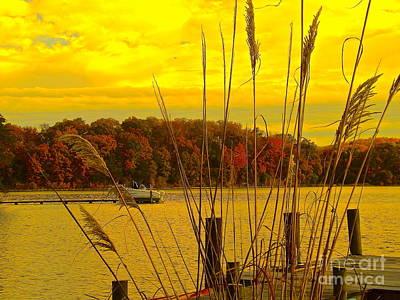 Photograph - Round Bay Severn River by John Potts