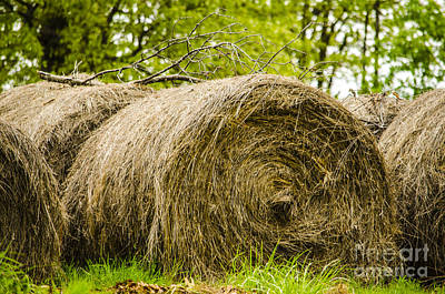 Photograph - Round Hay Bales Baxter Springs Kansas by Deborah Smolinske