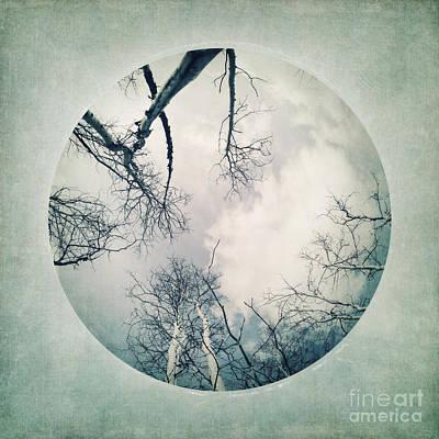 Serie Photograph - round treetops I by Priska Wettstein