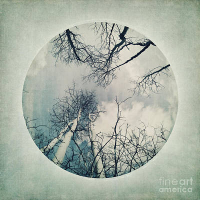Part Of Photograph - round treetops II by Priska Wettstein