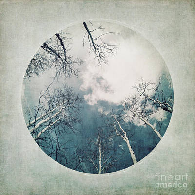 Part Of Photograph - round treetops III by Priska Wettstein