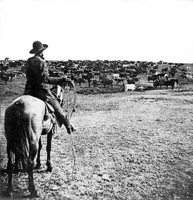 Working Cowboy Photograph - Round-up Time In Kansas by Underwood Archives