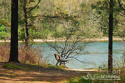 Photograph - Round Valley Bench 20120416_30a by Tina Hopkins