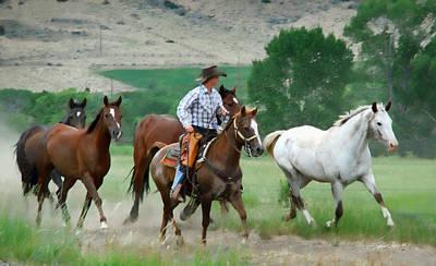 Horse Photograph - Roundup by Sylvia Thornton