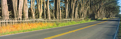 Route 1, Mendocino, California Art Print by Panoramic Images