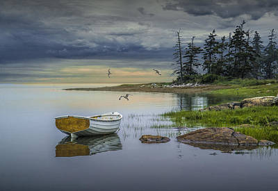 Row Boat By Mount Desert Island Art Print by Randall Nyhof
