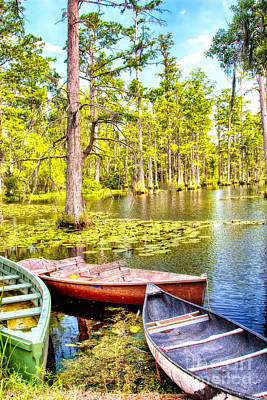 Row Boats In A Cypress Swamp Art Print by Dan Carmichael